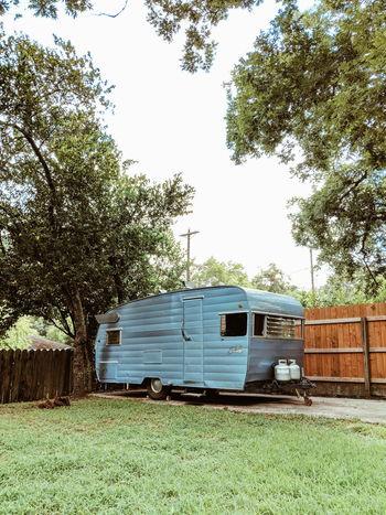 Tree Land Vehicle Sky