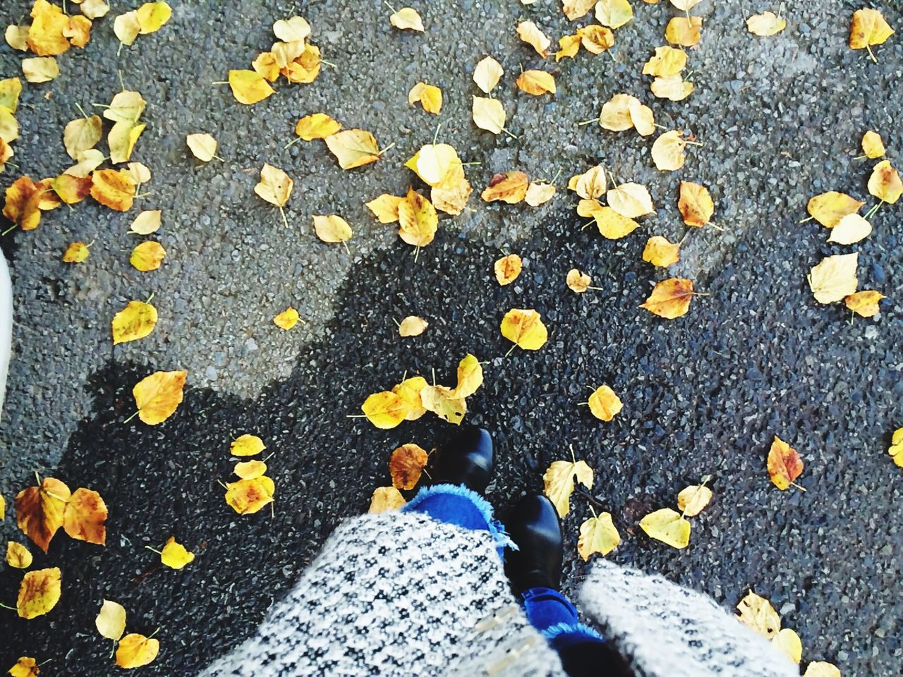 high angle view, low section, lifestyles, person, standing, leisure activity, street, autumn, shoe, personal perspective, leaf, yellow, men, directly above, season, day, casual clothing
