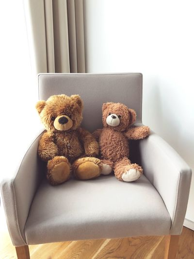 The teddy's Teddy Teddy Bear EyeEm Selects Stuffed Toy Toy Representation Indoors  Teddy Bear Still Life Toy Animal Day Softness Art And Craft Furniture Sofa Human Representation No People Home Interior Brown Close-up Stuffed