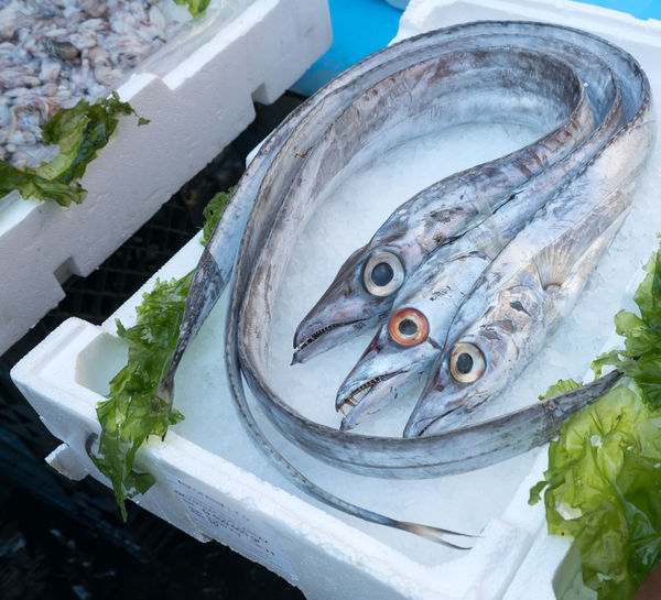 High angle view of fish with ice on polystyrene box at market stall