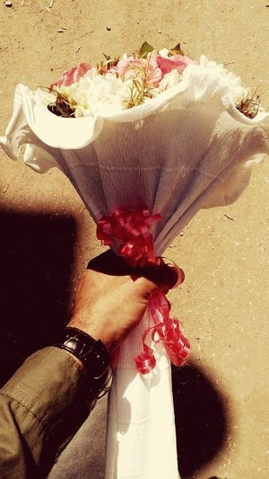 ولقائي بك دوما كأول لقاء our meeting with you is always like the first Present Love Floewers Metting Human Hand Water Red Sand Close-up Rose - Flower Single Rose Single Flower Wild Rose