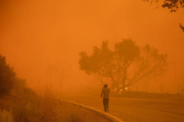Man walking on road against orange sky