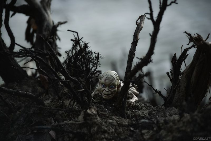 Gollum Gollum Smeagol Lord Of The Rings Herr Der Ringe Middle Earth Fantasy EyeEm Masterclass EyeEm Nature Lover Actionfigures Toy Figure MOVIE Tree Branch Demon - Fictional Character