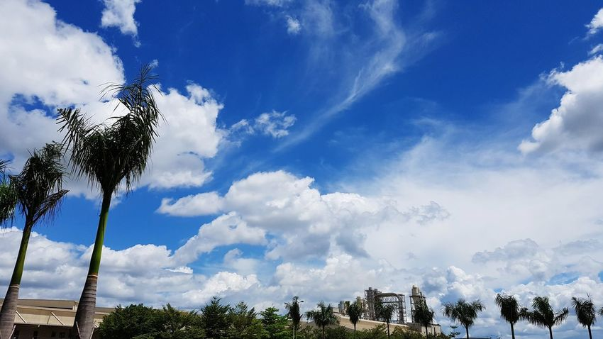 clouds sky day outdoor washing Sky Day Trees Cloud Blue Outdoors