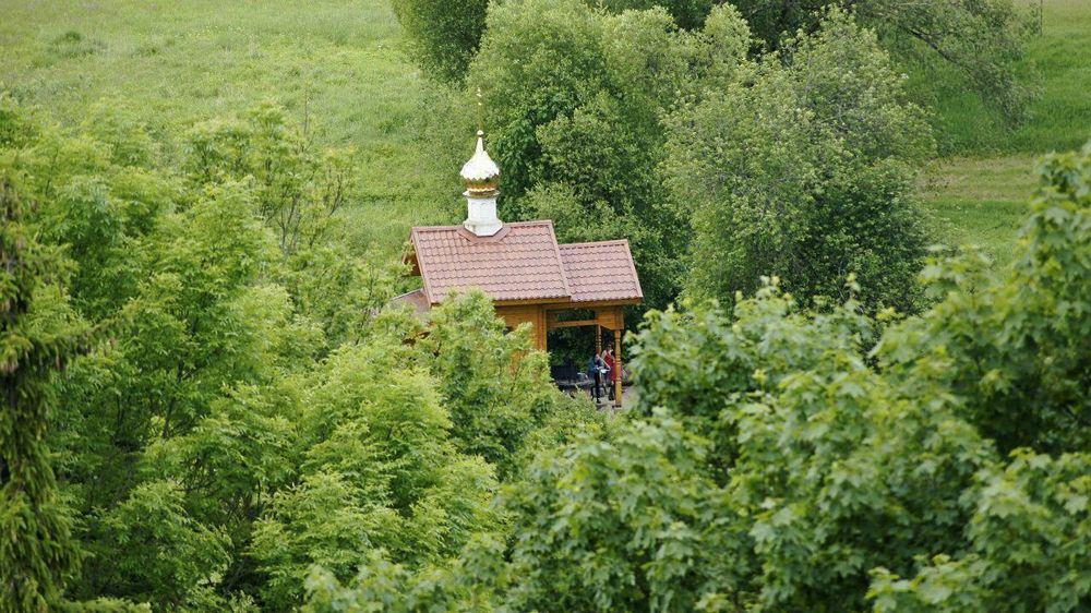 Pskov Izborsk Russian Church Green Color Tree Nature No People Beauty In Nature