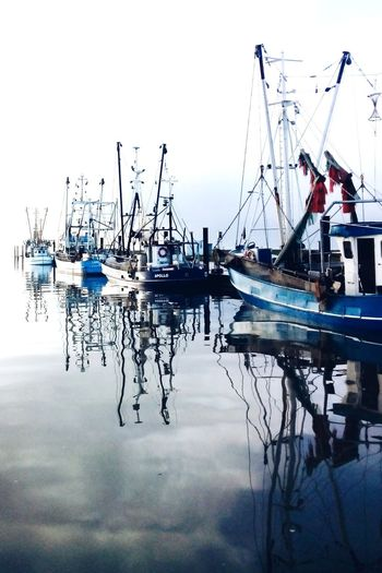 By The Sea Nordsee Wremen Fischkutter Homesick  Water Reflections Beauty In Ordinary Things Reflected Glory