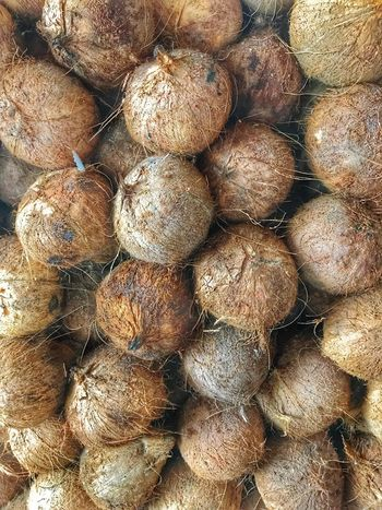 The coconut nut is a giant nut! Tropical Fruits Full Frame Food Food And Drink Backgrounds Abundance Freshness No People Close-up Healthy Eating Large Group Of Objects Stack Heap Indoors  Day