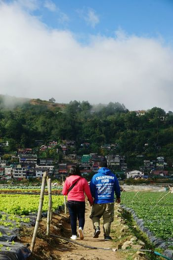 Baguio City, Philippines Leisure Nature Strawberryfield ASIA Agriculture Two People Rural Scene Cloud - Sky Mountain Landscape Farmer Sky Tree Outdoors