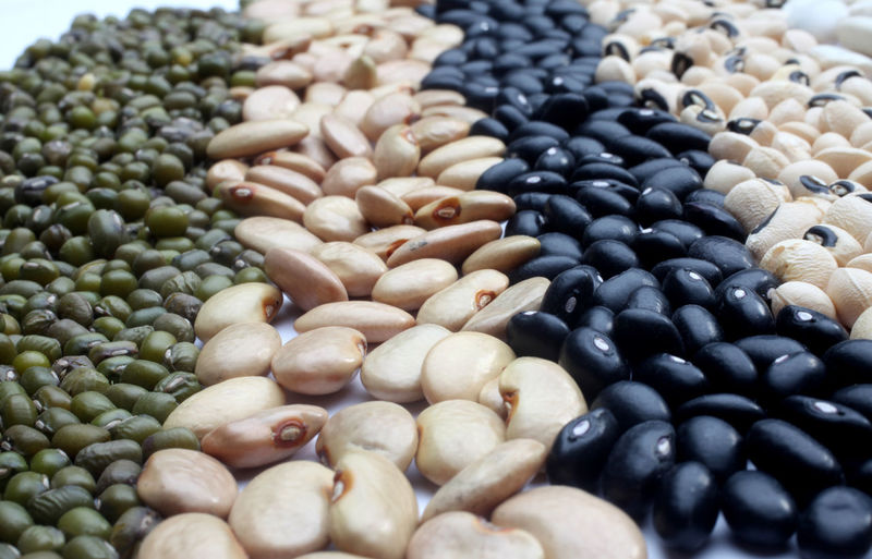 Various beans close up Calorie Bean Diet Dry Edible  Energy Food Food And Drink Freshness Grain Health Healthy Eating Ingredient Legume Nutrition Nutritive Organic Plant Raw Seed Seed Still Life Tasteful Vegetable