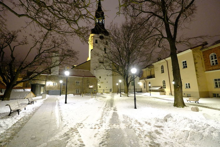 Snow Winter Cold Temperature Park Church City Tallinn Old Town Tallinn Estonia Night Nightphotography Tree Solitude And Silence Solitude