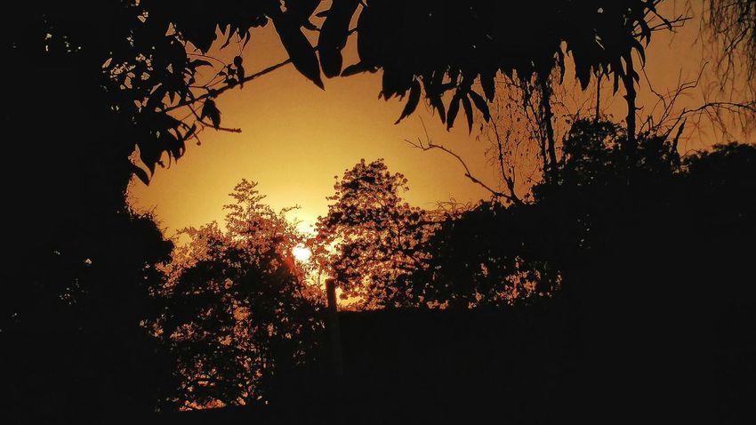 LenovoVibex3 Day Robinraj MrRobPhotography Sunset No People Tree