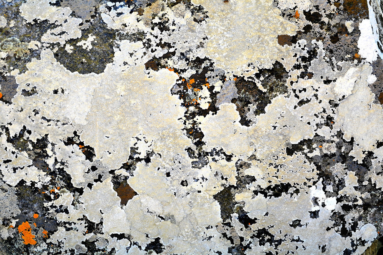 textured, backgrounds, abstract, weathered, full frame, pattern, rough, built structure, architecture, close-up, black color, paint, no people, outdoors, day
