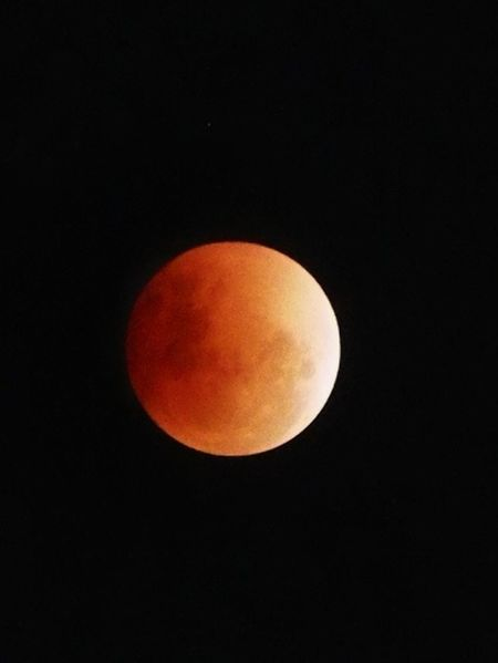 The Blood Moon Moon Astronomy Full Moon Nature Night Beauty In Nature No People