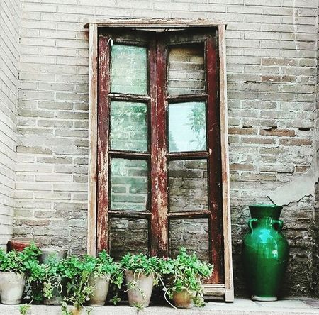 Window A Window To Nowhere Flowerpots Fine Art Glass - Material Wooden Frame Wood Walls Breakwall Flowers Broken Glass Old Buildings Traditional Solitude Uniqueness Wow!!😋 Captivity Null Life Yolo Hello World Check This Out Taking Photos Waiting