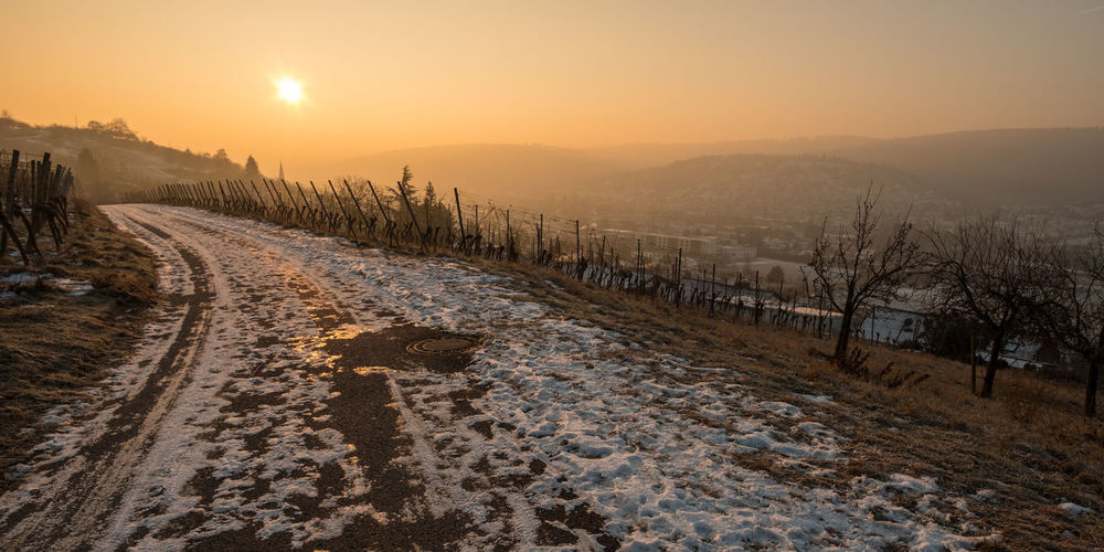 Sunrise in winter in a vineyard Ice Morning Remstal Sunlight Vines Beauty In Nature Cold Temperature Day Germany Landscape Nature No People Outdoors Scenics Sky Snow Sun Sunset Tree Vineyard Winter