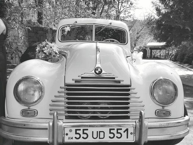 Bmw Car Oldcar