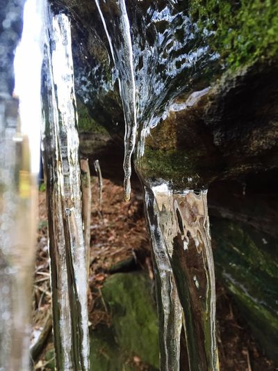 Wonders Of Nature Nature Icicles Forest Frozen Frozen Nature Winter Winter In The Mountains