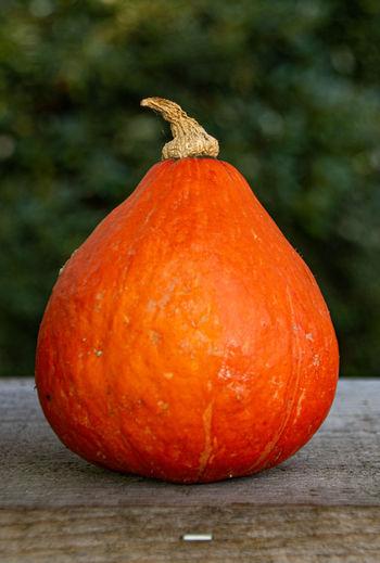 Close-up of orange pumpkin on table