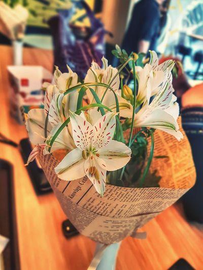 Close-up of flower bouquet