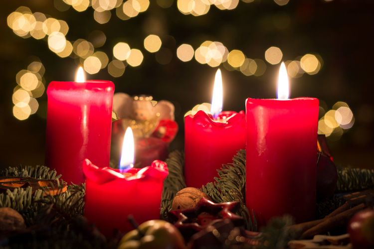 Close-up of burning candles amidst christmas decoration