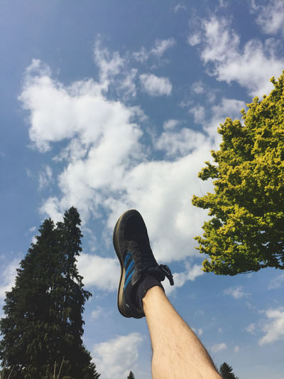 Low angle view of human hand on tree against sky