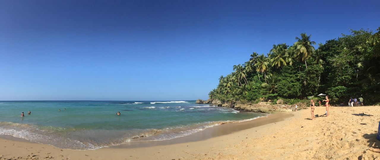 Beach Beauty In Nature Blue Clear Sky Dominican Republic Holiday Horizon Over Water Leisure Activity Nature Outdoors Palm Palm Tree Palm Trees Real People Sand Sea Shore Sky Summer Tranquil Scene Travel Travel Destinations Vacations Water Lost In The Landscape