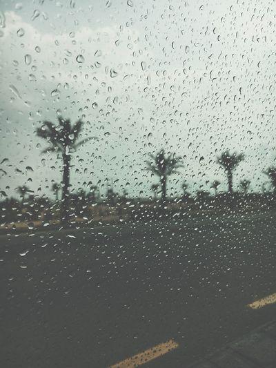 RainDrop First Eyeem Photo