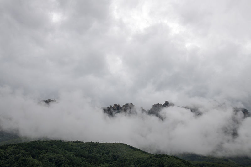 cloudy Ulsanbawi at Seolak Mountain in Gangwondo, South Korea Gangwondo Seolak Mountain Beauty In Nature Cloud - Sky Day Environment Idyllic Land Landscape Mountain Nature No People Non-urban Scene Outdoors Plant Scenics - Nature Sky Smoke - Physical Structure Tranquil Scene Tranquility Tree Ulsanbawi