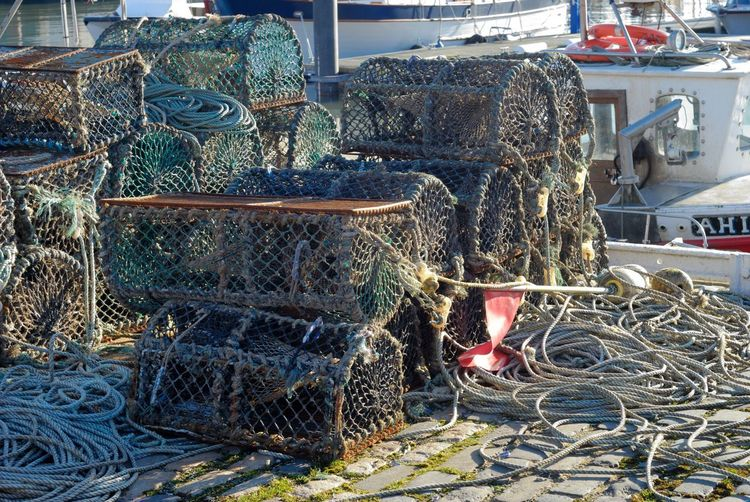 Creel Creel Nets Cable Cage Creels Day Equipment Fishing Equipment Fishing Industry Fishing Net Fishing Tackle Harbor Lobster Pots No People Outdoors Rope Stack Tangled Technology Trapped