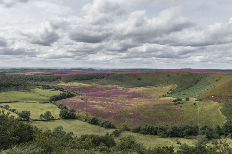 Hole Of Horcum Yorkshire Beauty In Nature Birds Eye View Cloud - Sky Heather Landscape Moorland Nature Outdoors Scenics Tranquil Scene