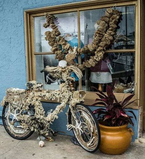 Fine Art Photography the picture became the photo it's self Journey Of Life Life Is A Journey Fine Art Enjoy The Journey The Journey Is The Destination Enjoy The Little Things Flower Collection Bike Love Bycicle Photography Bycicle Lovers Bycicle Art Art Of Street