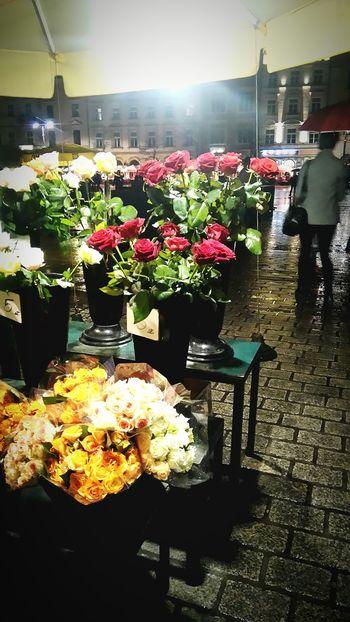 Flowers Stall Kwiaty Krakow Cracow Polska Poland Rynek Up Close Street Photography Cities At Night The Street Photographer - 2016 EyeEm Awards