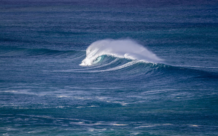 Big Pacific Ocean wave in Hawaii Hawaii North Shore Oahu USA Beauty In Nature Blue Breaking Wave Crashing Waves  Day Hawaiian Islands High Angle View Mammal Motion Nature No People Ocean Outdoors Pacific Ocean Scenics Sea Spray Travel Destinations Water Waves Waves, Ocean, Nature Wind