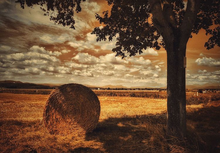 Hay Bale On Countryside Landscape Against Clouds