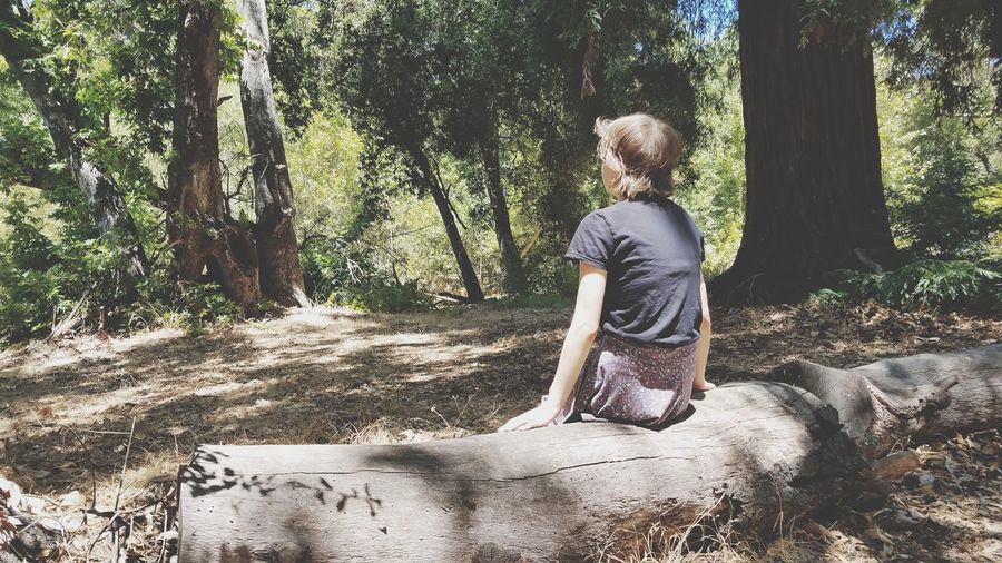 One Person Nature Log Bench Sitting Relaxing Outside Relaxing In Nature Thought Pondering Relaxation Weekend EyeEm Selects Tree Full Length Childhood Women Sand Child Shadow Young Women Hiker Tree Trunk WoodLand Fallen Tree Woods