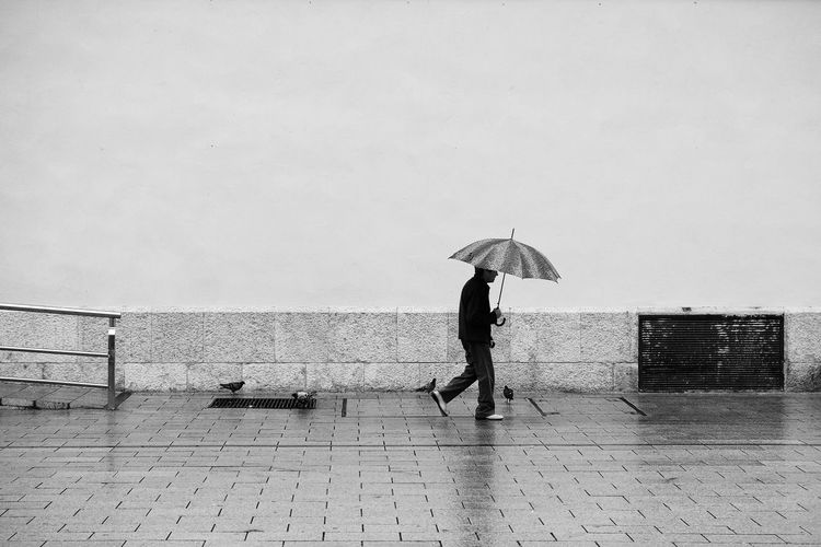 Side View Of Man Walking With Umbrella
