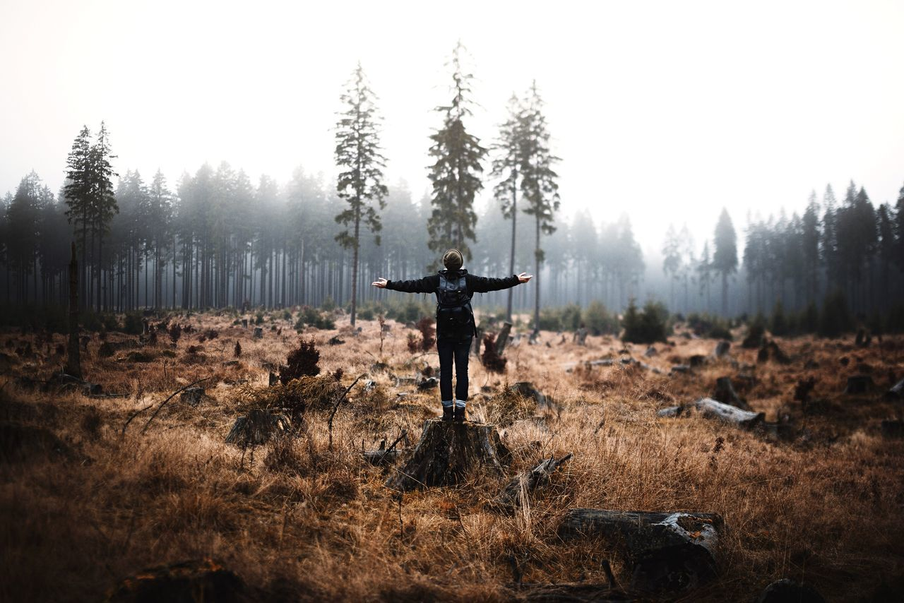 Rear view of woman standing on tree stump with arms outstretched against sky