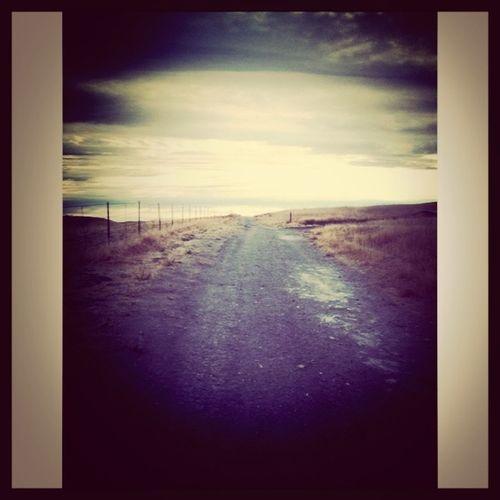 Contra Loma Trails