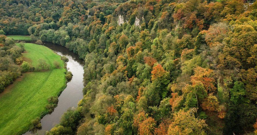 Autmn Colors Beauty In Nature Autumn Symonds Yat Perspectives On Nature