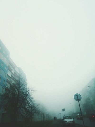 Foggy morning☁ City Outdoors Tree Streetphotography Fog Dull Color Sad Doomsday Atmosphere Cold Nature Sky People Cars