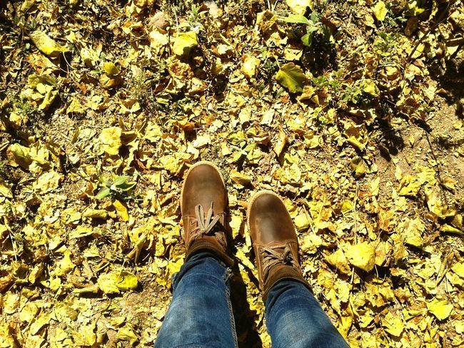 ?????Taking Photos Check This Out Hello World Nature Otoño Fall Fall Colors Boots Botas Hojas Secas