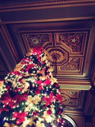 #xmas#xmastree#thewillardhotel
