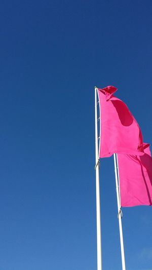 Flying high! Flags Blue Sky Negative Space