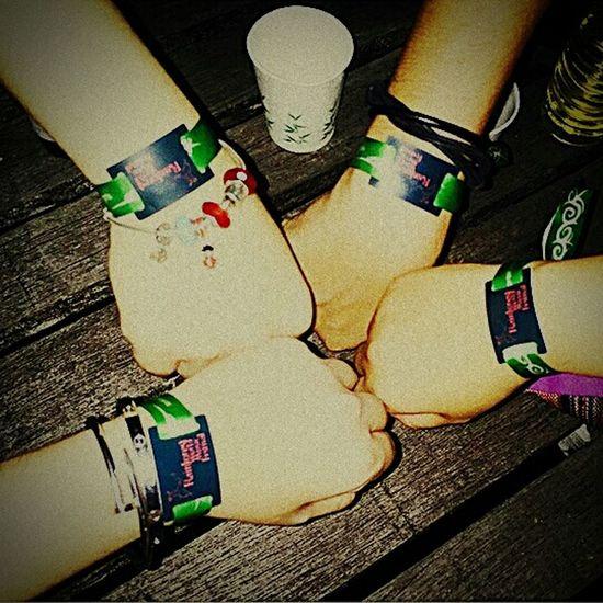 Rain forest music festival..