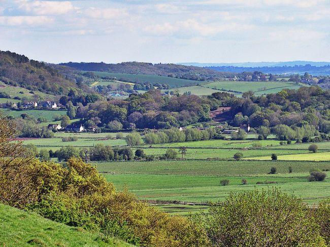 Agriculture Rural Scene Field Landscape No People Tranquility Freshness Somerset Levels Uk Springtime Green Color Outdoors Nature