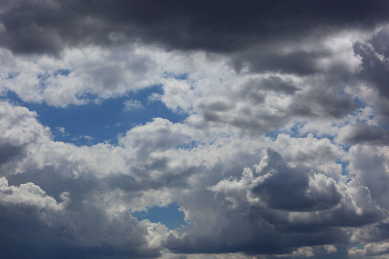 clouds in the sky, rain clouds, low pressure area Dark Clouds Atmosphere Backgrounds Beauty In Nature Blue Cloud - Sky Cloudscape Day Dramatic Sky Environment Low Angle View Low Pressure Area Meteorology Moody Sky Nature No People Ominous Outdoors Overcast Rain Clouds Scenics - Nature Sky Tranquility Wind