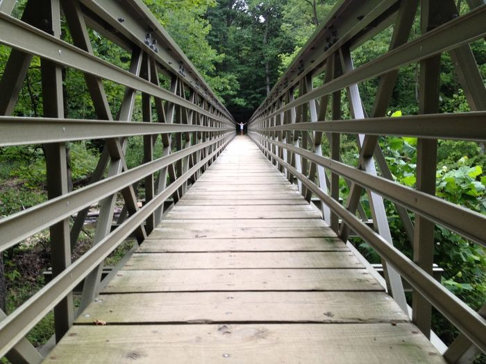 Diminishing View Of Footbridge In Forest