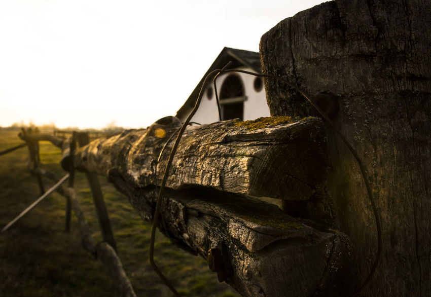 Focus On Foreground Home Nikonphotography No People Puszta