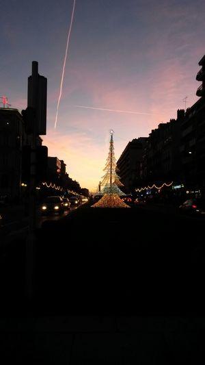 City Life Christmas Lights City Angers France 🇫🇷 Night Sunset First Eyeem Photo