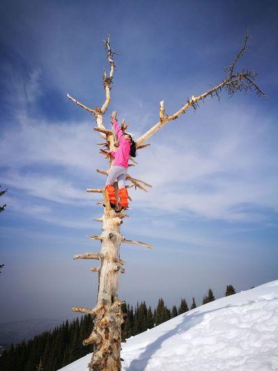 учимся лазать по деревьям Almatymountains Hiking Hikingadventures Weekend Activities WEKEEND EyeEm Selects Snow Winter Sky Rocky Mountains Mountain Mountain Range Peak Mountain Road